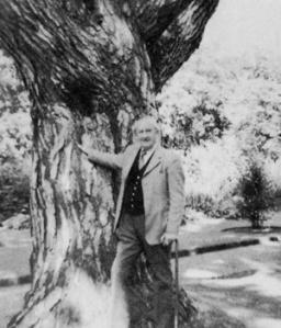 Tolkien in the Botanic Garden, Oxford